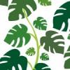 モンステラの葉のイラストを使用したパターン