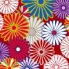 色とりどりの菊の紋が散らばる和柄パターン