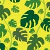 黄色背景にモンステラの葉が敷き詰められたパターン