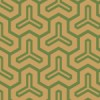 茶色と緑色の毘沙門亀甲柄パターン