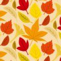 秋を感じさせるもみじのイラストパターン