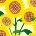 ヒマワリの花のイラストパターン